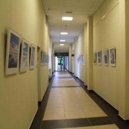 В новый год – с новой выставкой! «Жигулевская долина» представляет вниманию сотрудников и гостей…