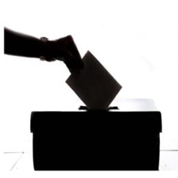 Стартовало досрочное голосование по вопросу одобрения изменений в Конституцию РФ