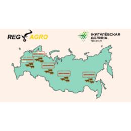 Автоматизированная система учета и регистрации животных «REGAGRO» поможет обеспечить эпизоотическую и продовольственную безопасность
