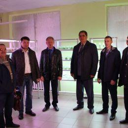 ООО «Биолаб» расширяет производства мини-клубней картофеля