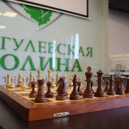 Александр Сергиенко избран президентом Федерации шахмат Тольятти