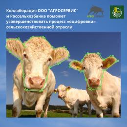 Коллаборация резидентов Сколково и Россельхозбанка поможет усовершенствовать процесс «оцифровки» сельскохозяйственной отрасли