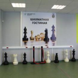 В «Жигулевской долине» открылась Шахматная гостиная