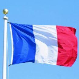 Технопарк посетит французская делегация